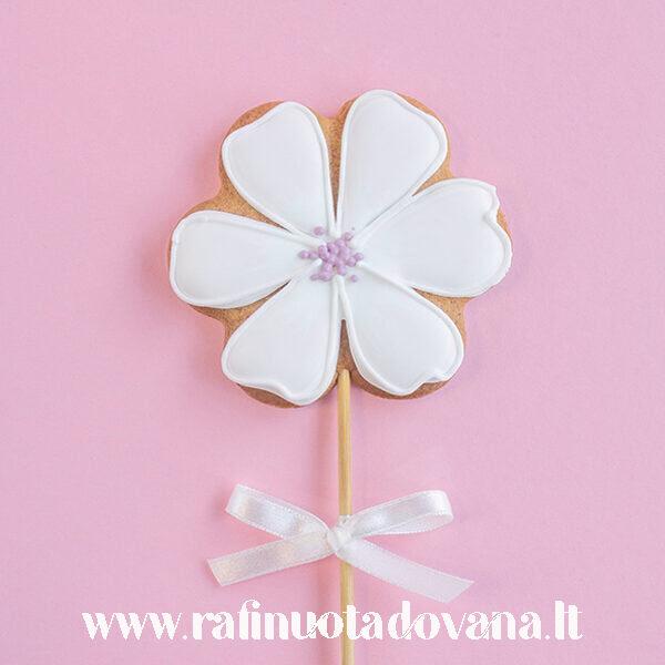 Gėlė balta